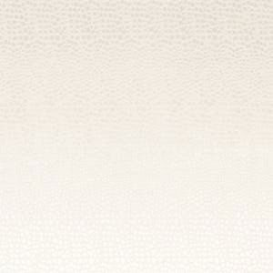 F0469/11 PULSE Pearl Clarke & Clarke Fabric