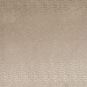 F0469/13 PULSE Sand Clarke & Clarke Fabric