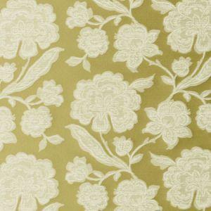 F0598/01 DOWNHAM Citrus Clarke & Clarke Fabric