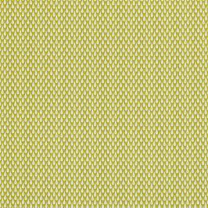 F0670/02 APRIL SHOWERS Citrus Clarke & Clarke Fabric