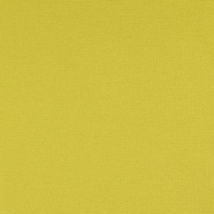 F0728/01 MONSOON Citrus Clarke & Clarke Fabric