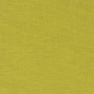 F0731/04 THUNDER Lime Clarke & Clarke Fabric