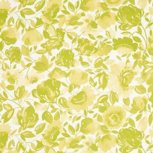 F0818/02 CAITLIN VELVET Citrus Clarke & Clarke Fabric