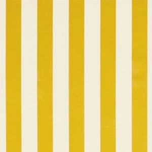 F0886/04 ST JAMES STRIPE Gold Clarke & Clarke Fabric