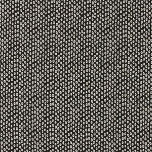F0888/01 BW1015 Black White Clarke & Clarke Fabric