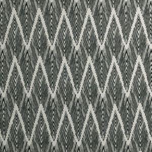 F0895/01 BW1022 Black White Clarke & Clarke Fabric