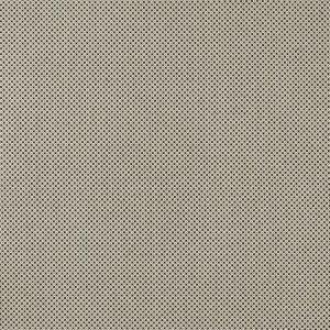 F0906/01 BW1033 Black White Clarke & Clarke Fabric