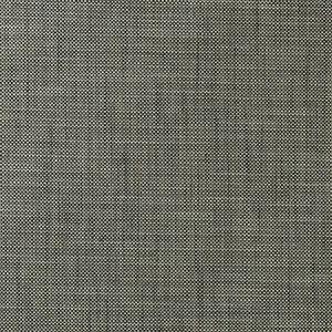 F0917/02 MADELEINE Smoke Clarke & Clarke Fabric