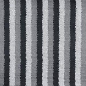 F0930/01 RAYA Ebony Clarke & Clarke Fabric