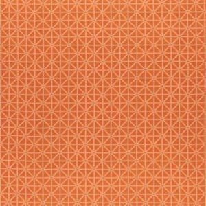 F0933/02 SUFI Flamingo Clarke & Clarke Fabric