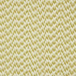 F0983/05 GIACOMO Olive Clarke & Clarke Fabric