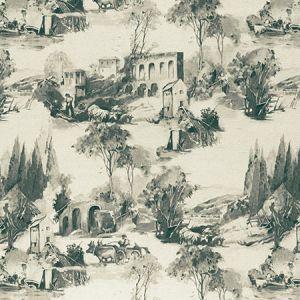 F0997/01 ANASTACIA Charcoal Clarke & Clarke Fabric