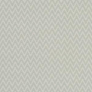 F1049/06 GLACIER Mineral Clarke & Clarke Fabric