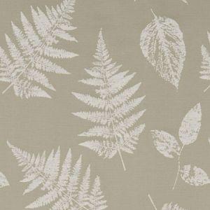 F1059/07 FOLIAGE Taupe Clarke & Clarke Fabric