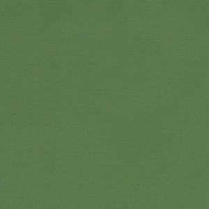F1097/43 ALORA Palm Clarke & Clarke Fabric
