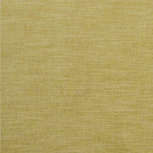 F1099/05 MORAY Citron Clarke & Clarke Fabric