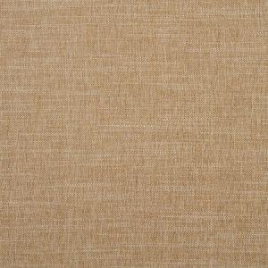 F1099/25 MORAY Pecan Clarke & Clarke Fabric