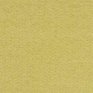 F1137/01 TRINITY Chartreuse Clarke & Clarke Fabric
