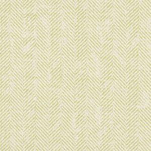 F1177/02 ASHMORE Citron Clarke & Clarke Fabric
