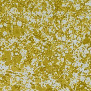 F1198/05 BASANITE Olive Clarke & Clarke Fabric
