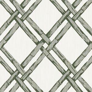 F1287/01 BHUTAN Charcoal Clarke & Clarke Fabric