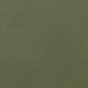 F1295/07.CAC.0 LUCCA Herb Clarke & Clarke Fabric