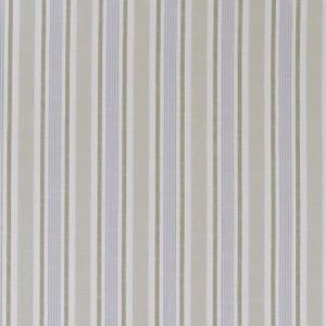 F1310/06 MAPPLETON Mineral Clarke & Clarke Fabric