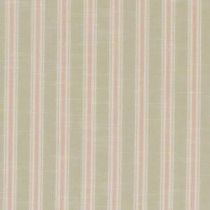F1311/01 THORNWICK Blush Clarke & Clarke Fabric