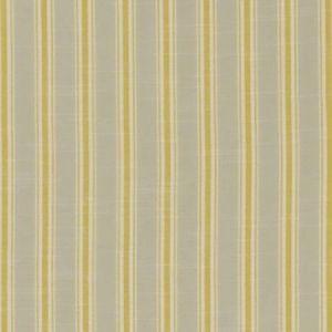 F1311/03 THORNWICK Citrus Clarke & Clarke Fabric
