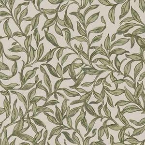 F1313/06 ENTWISTLE Willow Clarke & Clarke Fabric