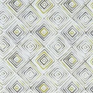 F1359/01 OTIS Chartreuse Charcoal Clarke & Clarke Fabric
