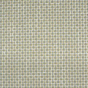 F2262 Chambray Greenhouse Fabric