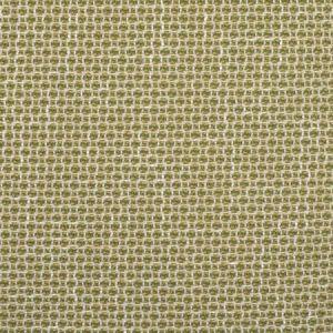 F2353 Cactus Greenhouse Fabric