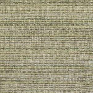 F2999 Elm Greenhouse Fabric