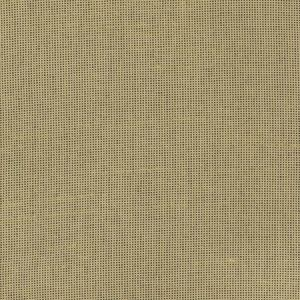 FLEETING Cashew Carole Fabric