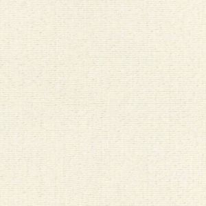 GW 0001 27212 REED TEXTURE Canvas Scalamandre Fabric