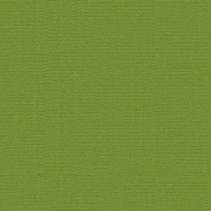 GWF-2507-323 CANOPY SOLID Lime Groundworks Fabric