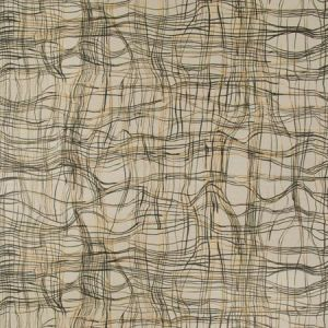 ENTANGLE PAPER Charred Groundworks Wallpaper