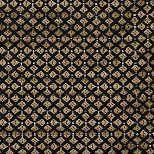 H0 L002 0797 CLUB Alezan Scalamandre Fabric