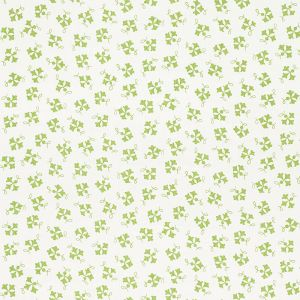 177842 NOSE GAY Moss Schumacher Fabric