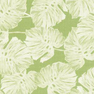 178342 DEL COCO Leaf Schumacher Fabric