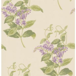 100/12056-CS MADRAS VIOLET Olive Lavender Cole & Son Wallpaper