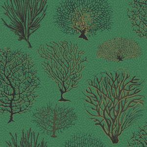 107/2007-CS SEAFERN Emerald Cole & Son Wallpaper