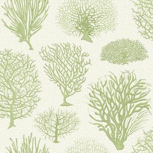 107/2008-CS SEAFERN Soft Green Cole & Son Wallpaper