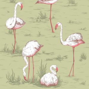 112/11038-CS FLAMINGOS Olive Cole & Son Wallpaper