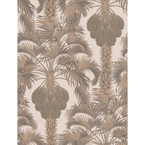 113/1002-CS HOLLYWOOD PALM Rose Gold Cole & Son Wallpaper