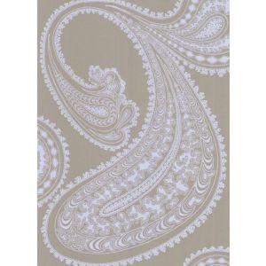 66/5039-CS RAJAPUR Pale Bl Tpe Cole & Son Wallpaper
