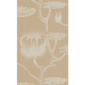 69/3113-CS LILY Ivory Sand Cole & Son Wallpaper