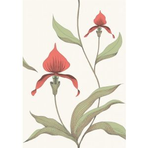 95/10054-CS ORCHID Red White Cole & Son Wallpaper