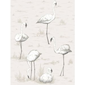 95/8046-CS FLAMINGOS Charcoal Wht Cole & Son Wallpaper